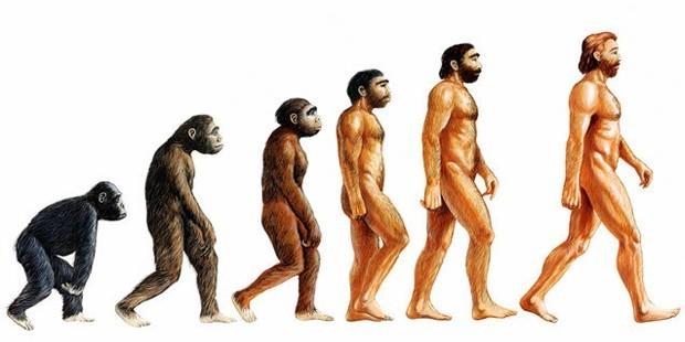 Varlıkların yaratılması evrimle açıklanabilir mi?