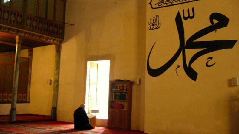 Müslümanların Medeniyet İthali