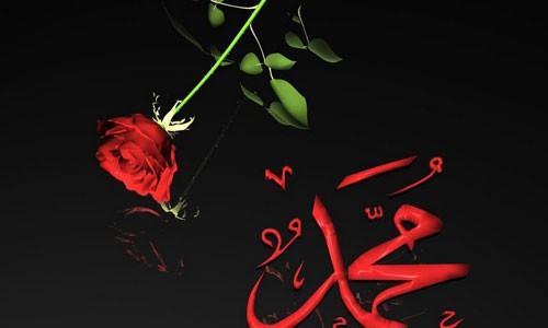 İslam Mesajını Anlamak Resulullah'a (a.s) İtaat ile Olur