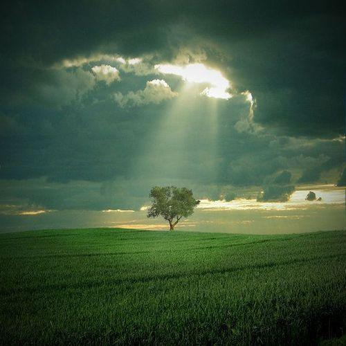 İsa (a.s.)'ın nüzulü ve Mehdi (a.s.)'in gelmesi ile ilgili açık ayet var mıdır?
