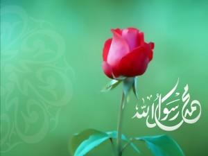 Resulullah'ın Sünneti Hakkındadır
