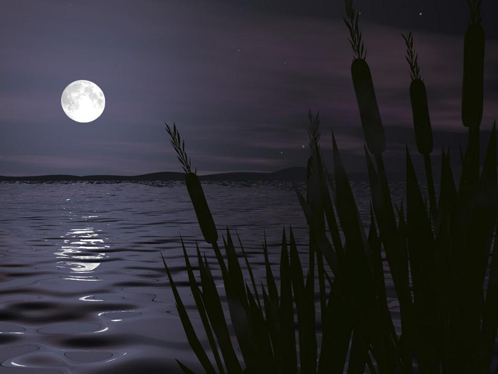 Gece İzi