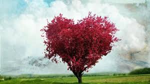 indir-2-2 Sevgi Uygarlığı
