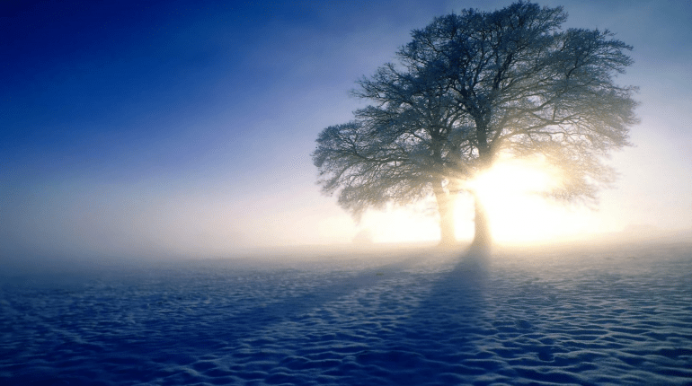 Ahirette Dünya Hayatını Bir Saat Gibi Görmenin Sebebi