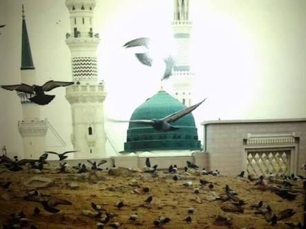 İmâm-ı Rabbânî'nin Sahabe Hakkındaki Görüşleri