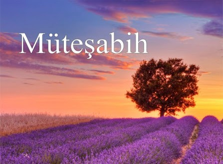 İbnü'l-Müneyyir'e Göre Müteşâbih Hadislerin Yorumu