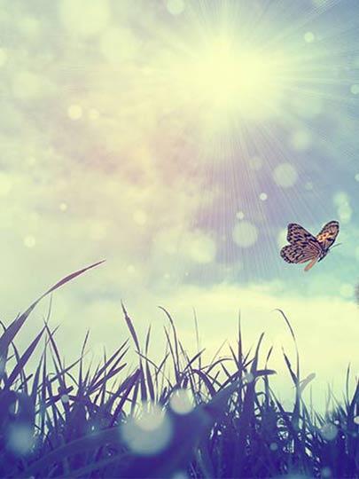 Özgürlük ve Mutluluk Anlayışımız