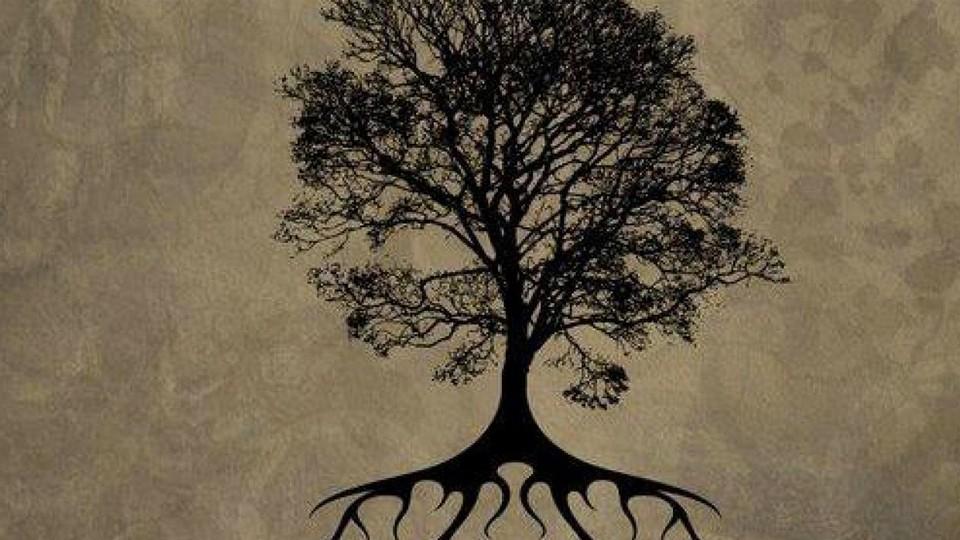 İslam Düşüncesinde Niyet Kavramı: İrâde, Gaye, İhlâs ve Burhân