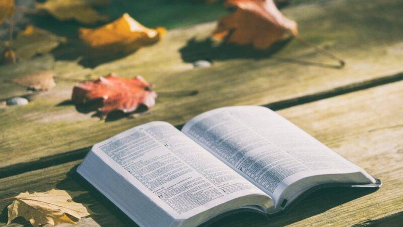 Kitap Okumak Gerek Hem de Çok!