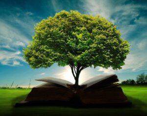 bilgi-bilgelik-antik-yunan-felsefe-sözleri-1-300x237 Bilgi ve Zihinsel Altyapısı