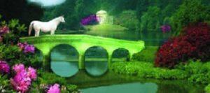 cennet-890x395_c-300x133 Sanat Eseri