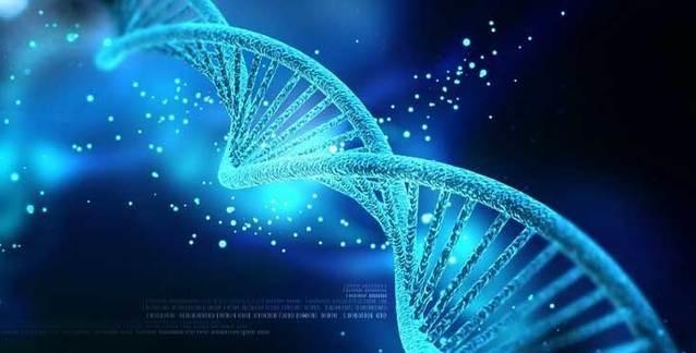İnsandaki Genlerin Mahiyeti